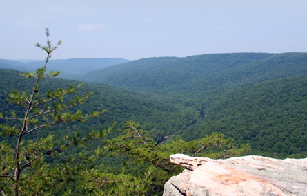 Photo of a beautiful White County natural view